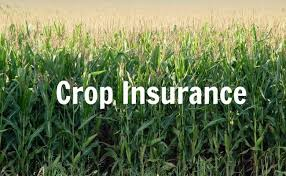 Explore Agriculture Crop Insurance Market: Chubb, Prudential Financial, AXA, Everest Re