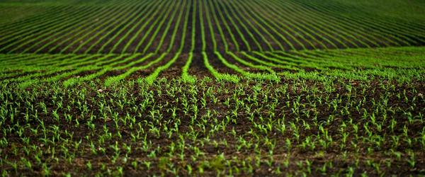 Smart Harvest 2020 Global Market – Opportunities, Challenges, Strategies & Forecasts 2024