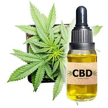 CBD Oil Market SWOT Analysis by Leading Players- ENDOCA, Isodiol, Medical Marijuana, Aurora Cannabis