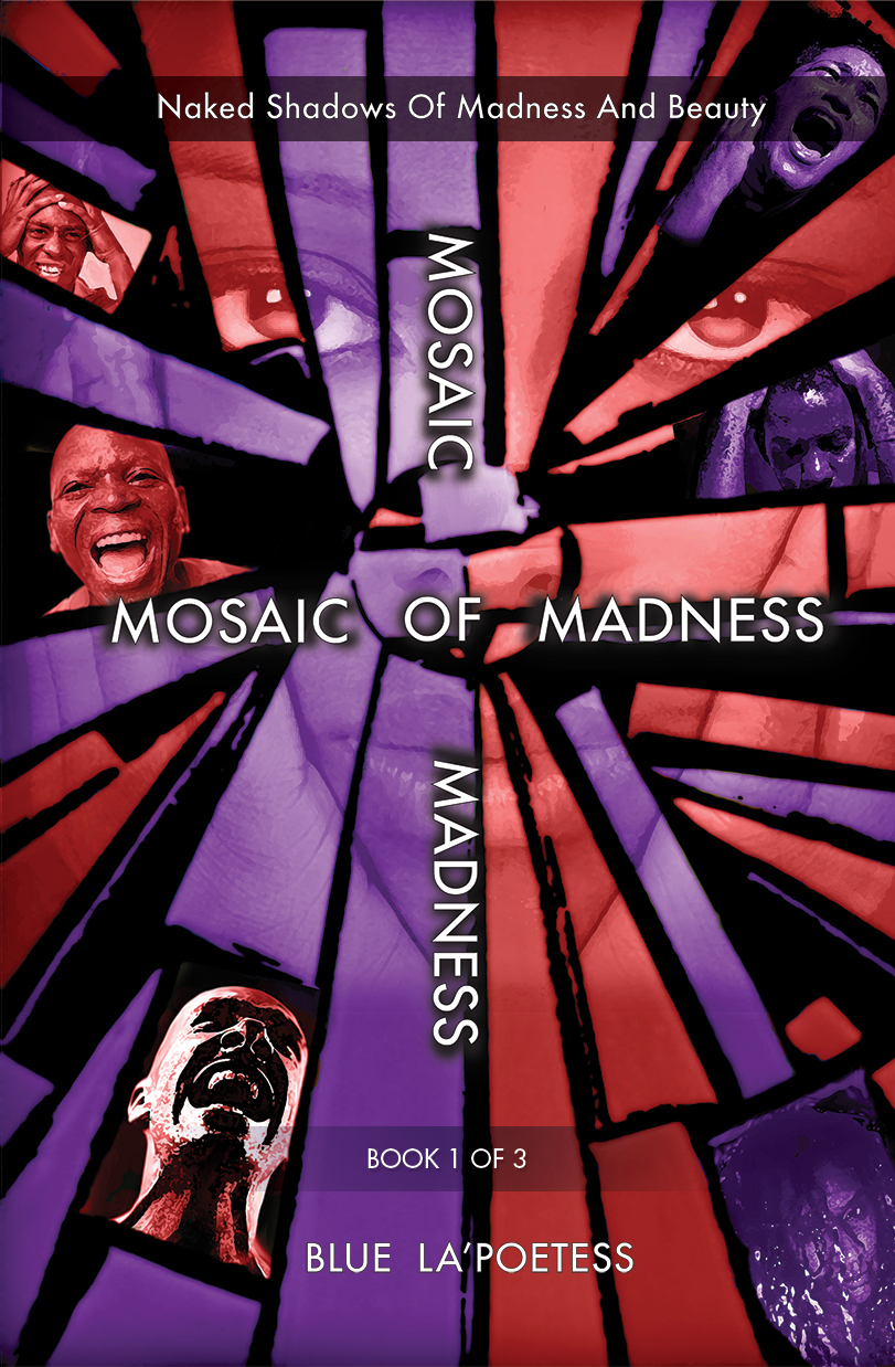 Mental Illness Advocate Sharon Vollin Announces Launch of First Book in a Trilogy, A MOSAIC OF MADNESS