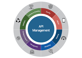 Global API Management Market growing at a CAGR of over 35% between 2019 and 2026