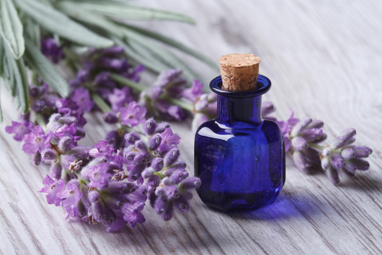 Lavandula Oil 2020 Global Market Analysis, Company Profiles and Industrial Overview Research Report Forecasting to 2026
