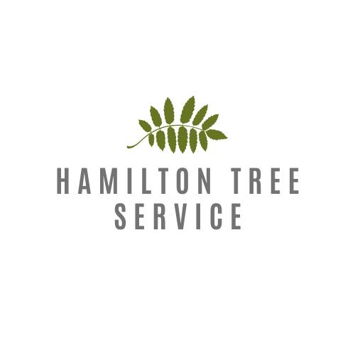 Hamilton Tree Service Prepared for Emergency Tree Removal
