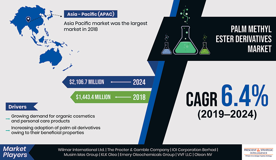Palm Methyl Ester Derivatives Market Driven by Need for Sustainable Power