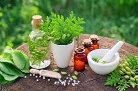 Herbal Medicines Market Size Analysis and Growth Opportunities by 2025: Dabur, Herbal Africa, Nature Herbs