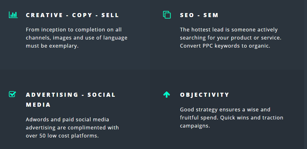 Darius Digital Marketing Consultant currently offering free digital strategy guide