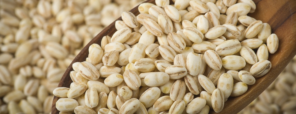 Barley Market Report, Size, Share, Industry Growth, Price Analysis, Trends, Outlook, Forecast 2020-2025