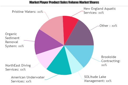 Dredging Services Market to See Major Growth by 2025 | SOLitude, Pristine Waters, Wealing Brothers