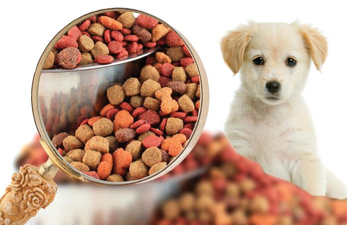 Pet Food Market Report 2020, Size, Share, Industry Growth, Research, Trends, Price Analysis, Maarket Outlook and Forecast