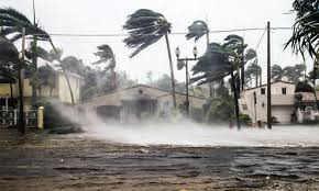 Business Catastrophe Insurance Market to see Hefty Growth with key players Allianz, AXA, Nippon Life Insurance, American