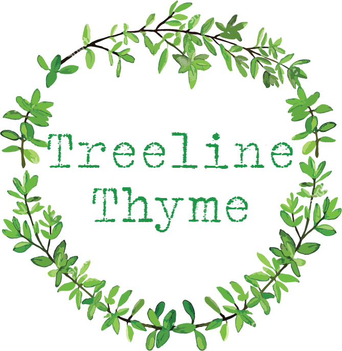 After New York and Chicago, Treeline Thyme is now exploring Portland, Oregon as their latest travel subscription box destination