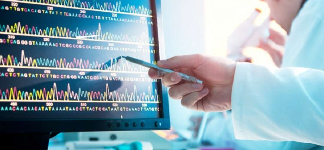 Healthcare Information Software Market SWOT analysis – Worldwide Growth Survey by 2025 | Allscripts, Dell, Epic Systems