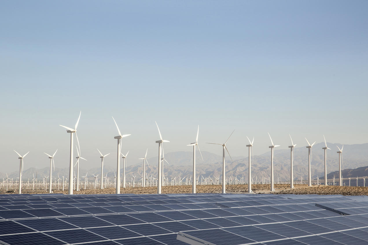 Global Renewable Energy Market Size 2020-2025, Report, Industry Growth, Share, Price Analysis, Outlook and Forecast