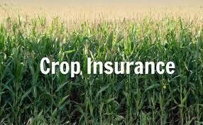 Agriculture Crop Insurance- A Market Worth Observing Growth | Chubb, AXA, Sompo