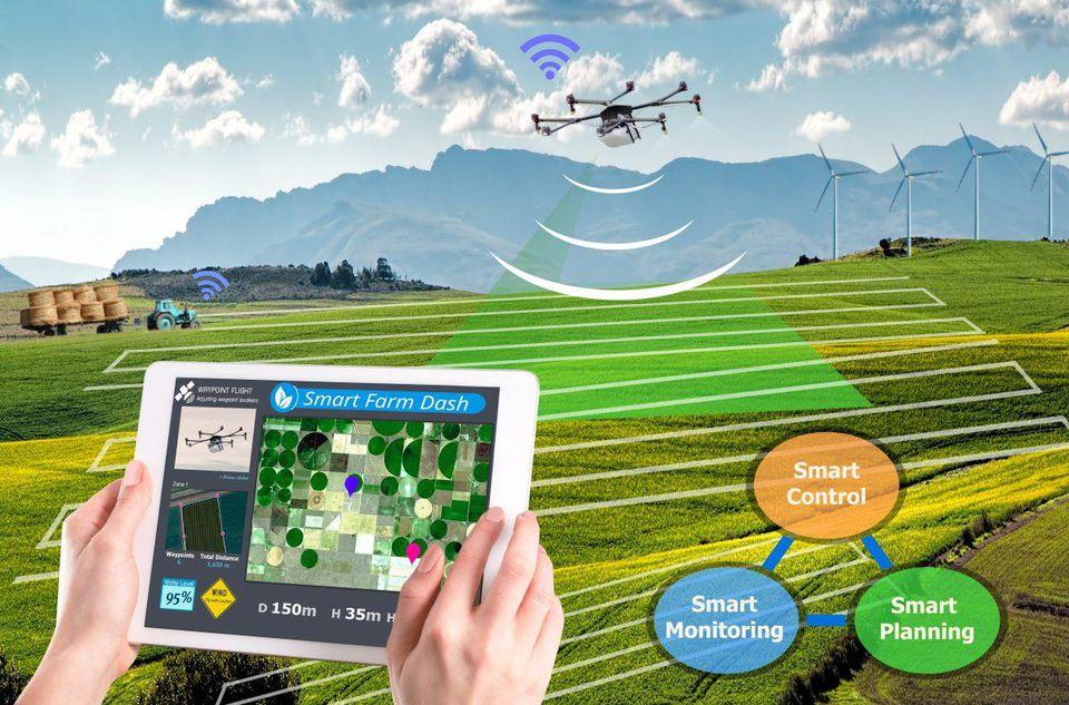 Agricultural AI Market is Booming Worldwide   IBM, Deere & Company, Intel, Google, Microsoft, NVIDIA