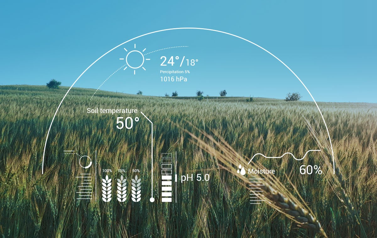 Artificial Intelligence in Agriculture Market Type, Application, Specification, Consumption, Segmentation, Technology and Forecast to 2024