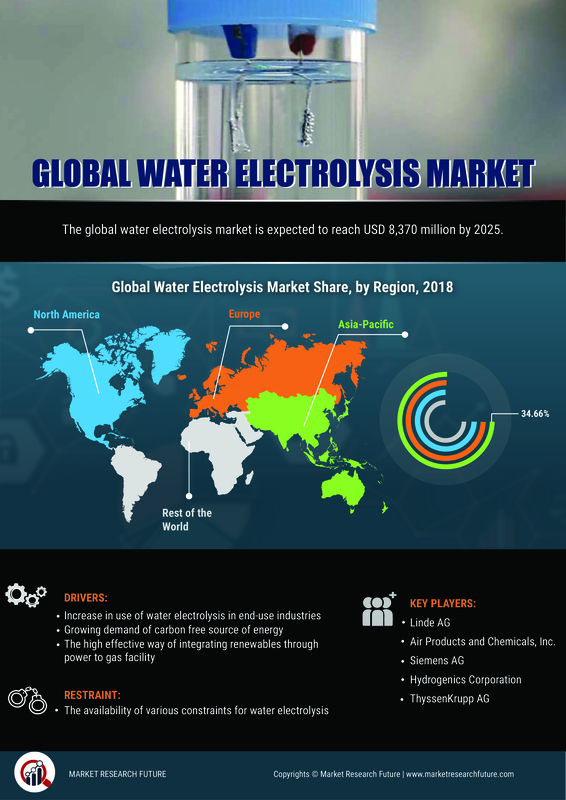 Electrolysis of Water Market: SWOT Analysis and Competitive Landscape By 2025 With Worldwide Overview By Size, Share, Global Leaders, Drivers-Restraints, Major Segments and Regional Trends