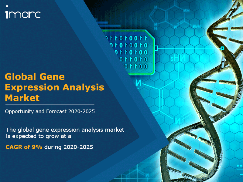 Gene Expression Analysis Market Size, Share 2020: Global Industry Report, Growth, Trends, Overview, Top Companies and Forecast Till 2025
