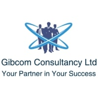 New Digital Agency Gibcom Marketing Launches Services for Effective Online Campaigns and Quick Results