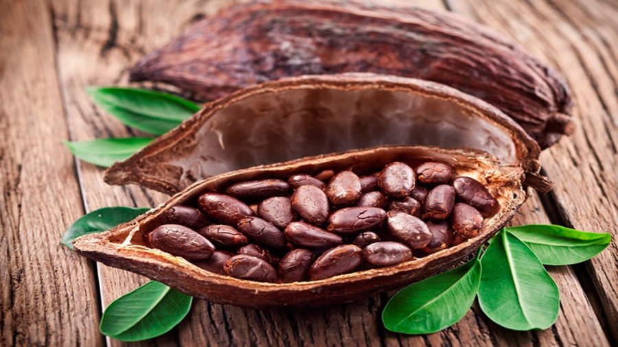 Organic Cocoa Market to Witness Massive Growth by 2025: Olam, BT Cocoa, Tradin Organic Agriculture, Conacado Agroindustrial