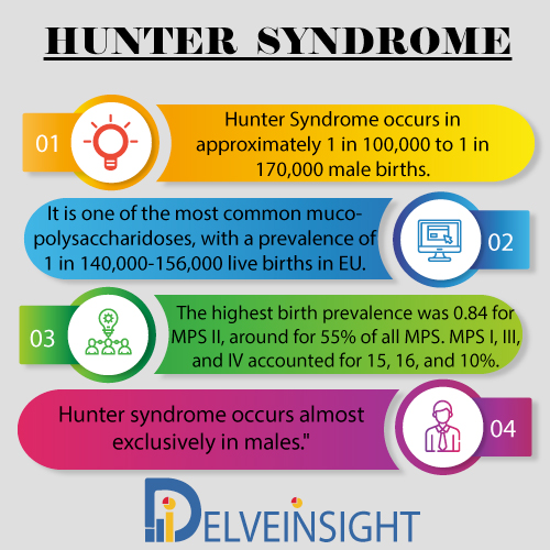 Hunter Syndrome Market Insight, Market Size, Epidemiology, Leading Companies, Emerging and Marketed Therapies By DelveInsight