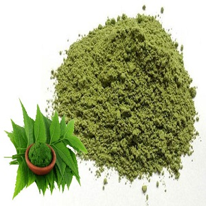 Neem Powder Market to See Huge Growth by 2025 | Agro Extracts, Apex International, Jain Agro Industries