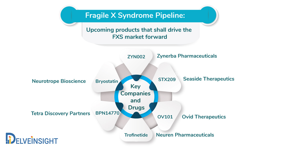 Fragile X Syndrome Pipeline: Upcoming products that shall drive the FXS market forward