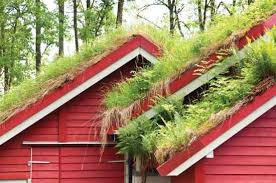 Vegetation Roof Market Is Likely to Experience a Tremendous Growth by 2020-2026: SKYSPACE Green Roofs, ZinCo GmbH, Whitco Green Roofing