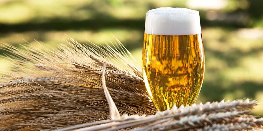 Beer Malt Market Outlook: Poised For a Strong 2020 | RedBull, Amstel Bier, Amstel Bier