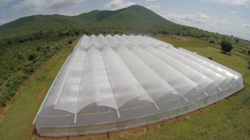 Greenhouse Film 2020 Global Market Net Worth US$ 8.3 billion Forecast By 2026