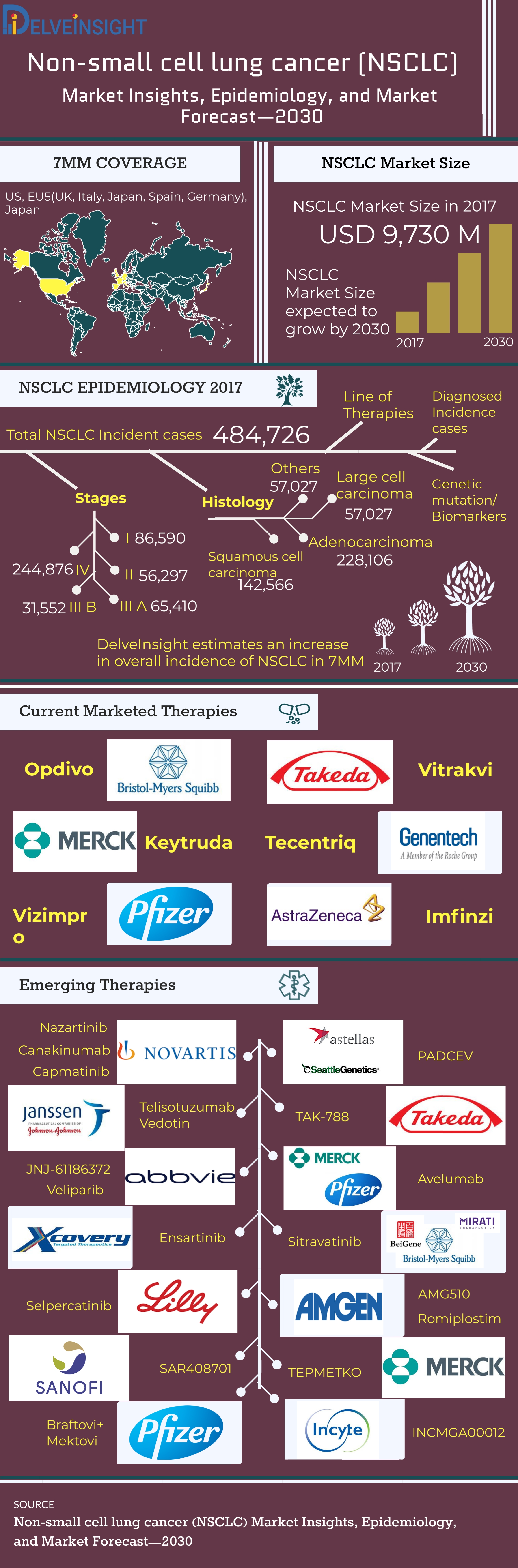 Non-Small Cell Lung Cancer Global API Manufacturers, and Late-stage products