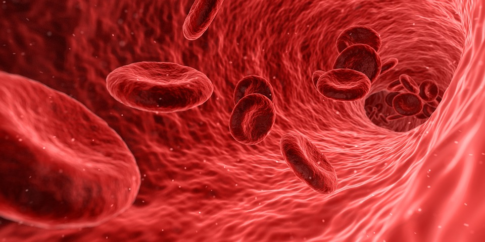 Impact of Covid-19 Outbreak on Global Stem Cell Therapy Market - Future Opportunities and Forecast Analysis 2020-2026