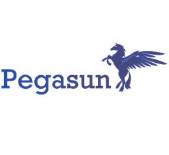 Pegasun announces Windows 10 Optimizer, a software designed to maximize PC performance