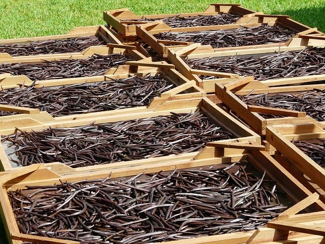Vanilla and Vanillin Market 2019-2024: Industry Analysis, Size, Share, COVID-19 Impact, Demand, Growth, And Future Scope
