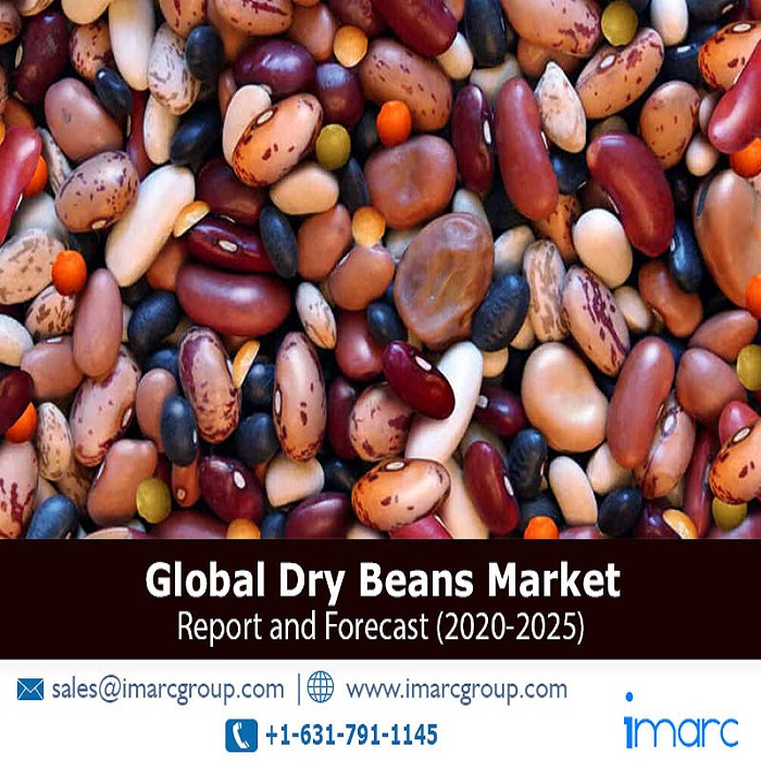 Global Dry Beans Market Overview 2020: Growth, Price Trends and Forecast Research Report to 2025