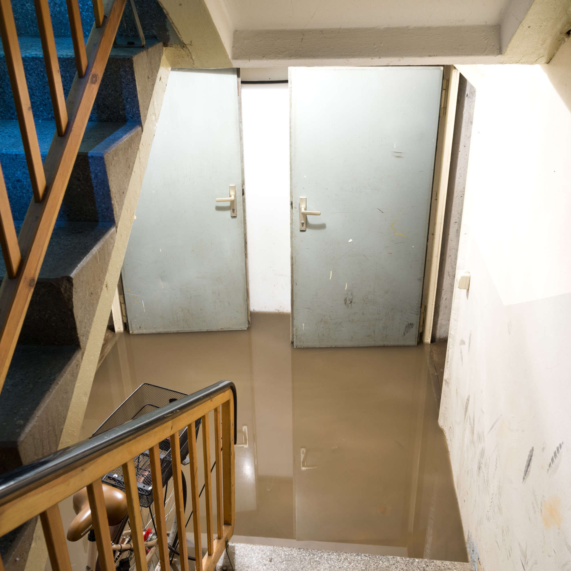 Water Damage Mentor Offers Expert Advice and Valuable Information On The Hazards of Water Damage
