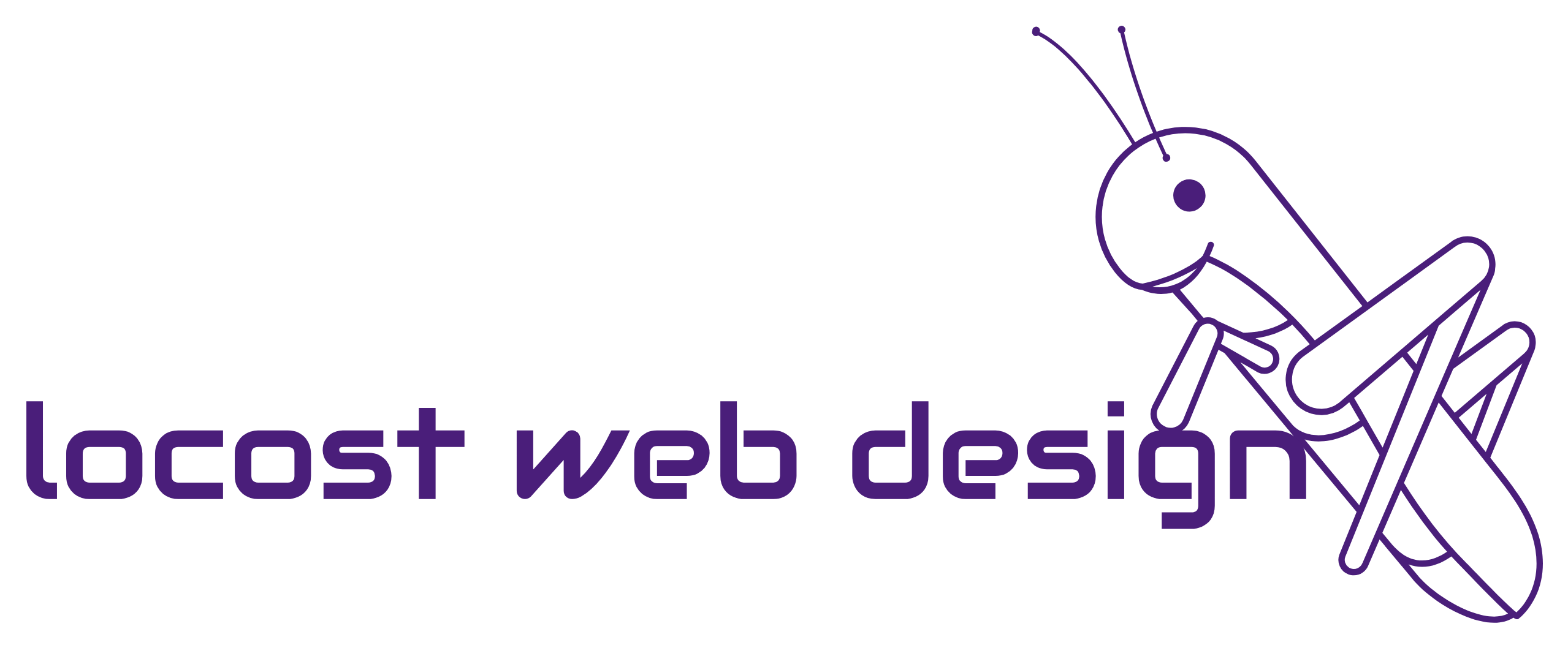 Locost Web Design has been providing web development and internet marketing services in North Jersey for many years to many local and national companies