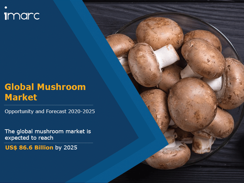 Mushroom Market Research Report 2020, Industry Growth, Global Production, Size, Share, Key Players and Forecast By 2025