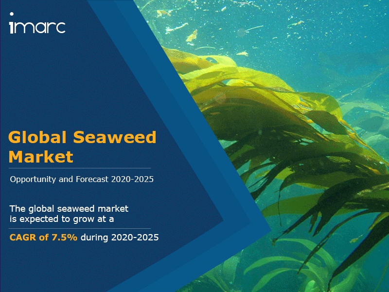 Global Seaweed Market Analysis 2020, Price Trends, Growth Report, Value, Size, Share, Key Players and Forecast By 2025