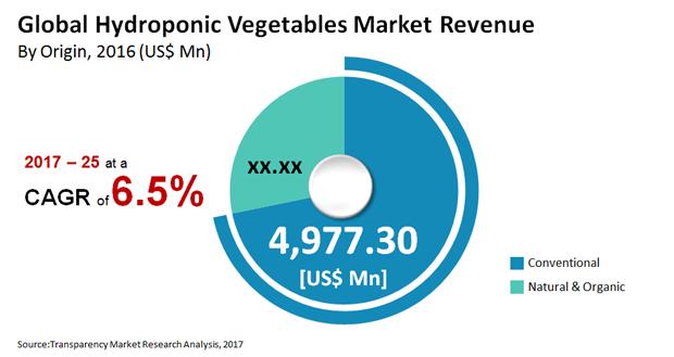 Hydroponics Market - Global Industry Report, 2025