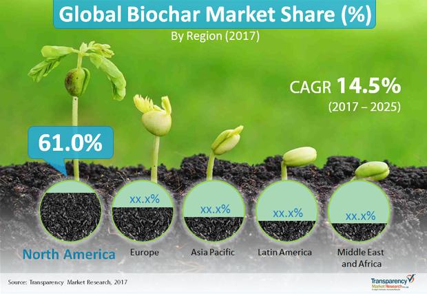 Biochar Market To Reach US$14,751.8 thousand by 2025