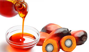TMR Analyzes Impact of Outbreak of COVID-19 on Palm Kernel Oil Market
