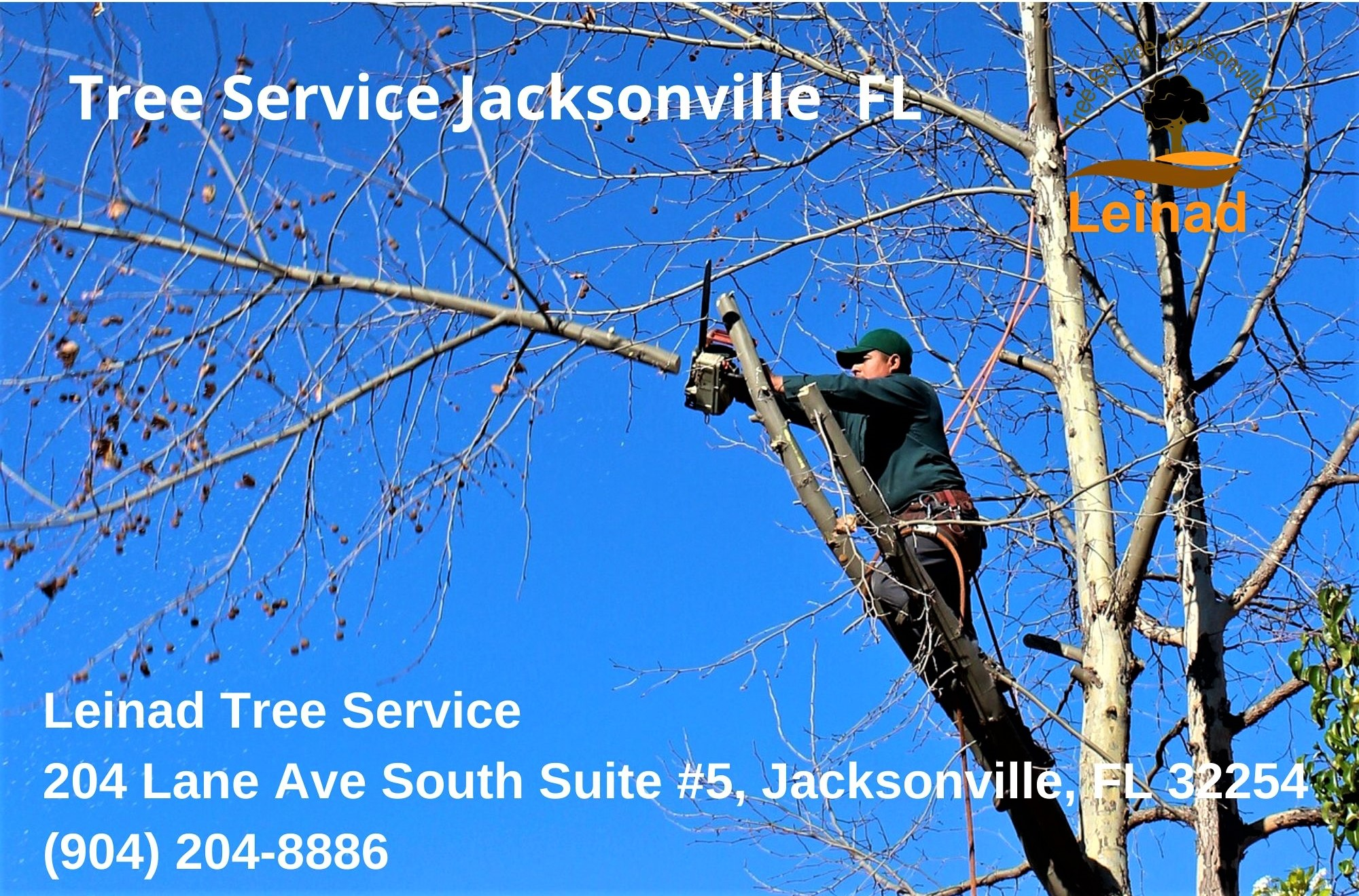 Jacksonville Tree Service Company, Leinad Tree Service, Launches New Website To Enhance Customer Experience In Jacksonville, Florida