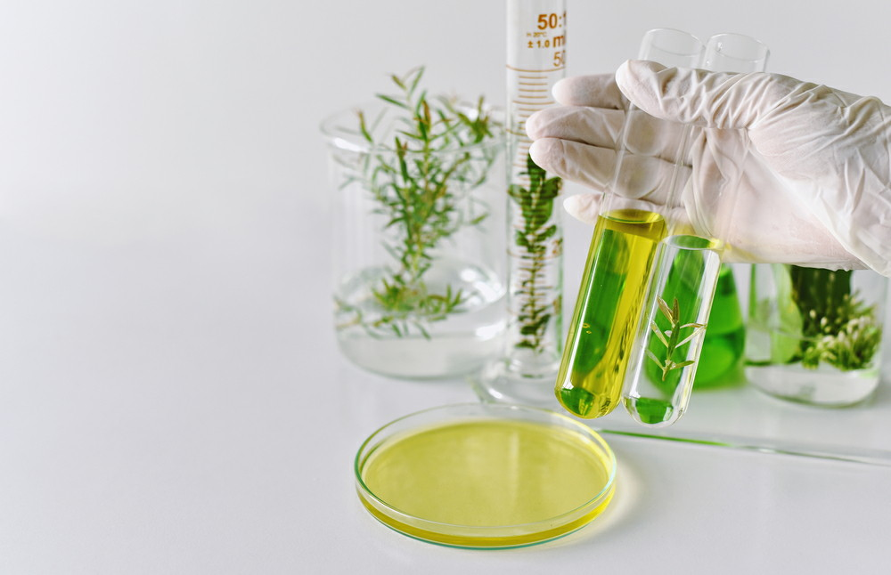 Global Cosmetic Ingredients Market to be Driven by the Clean Labelling of Cosmetics in the Forecast Period of 2020-2025