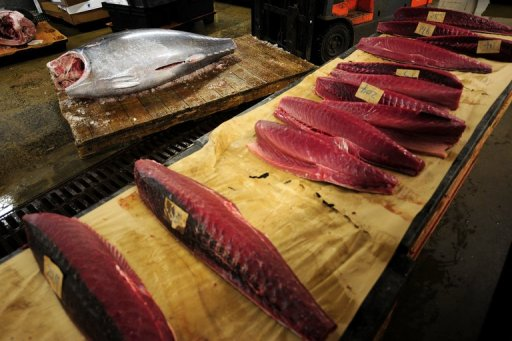 Global Tuna Market to be Driven by Rising Demand for Canned Tuna in the Forecast Period of 2020-2025