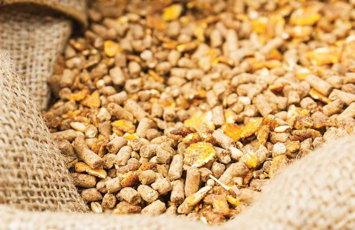 Global Feed Enzymes Market to be Driven by the Growing Meat Industry in the Forecast Period of 2020-2025