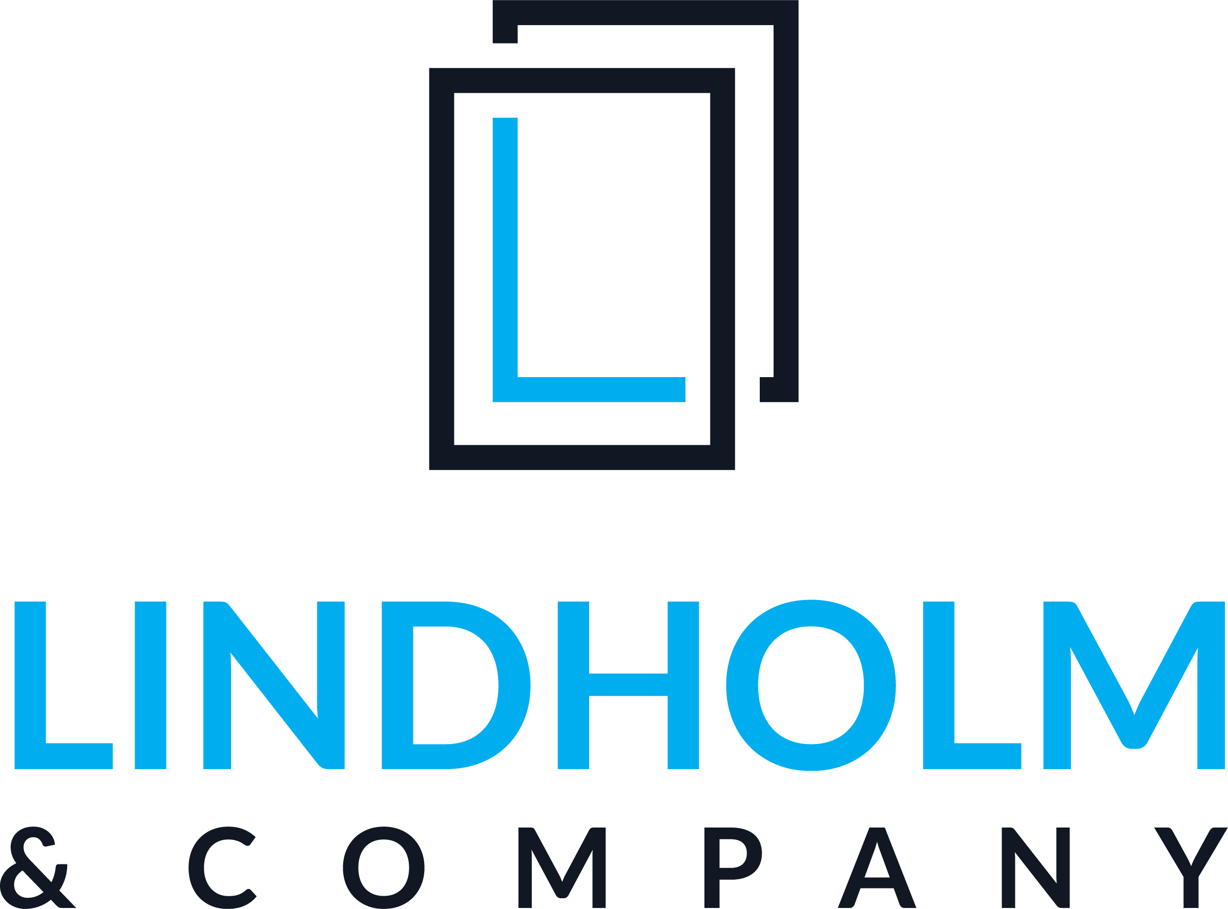 Lindholm & Company Offers Real Estate Professionals and Business Owners the Opportunity to Win the Battle Against High Taxes