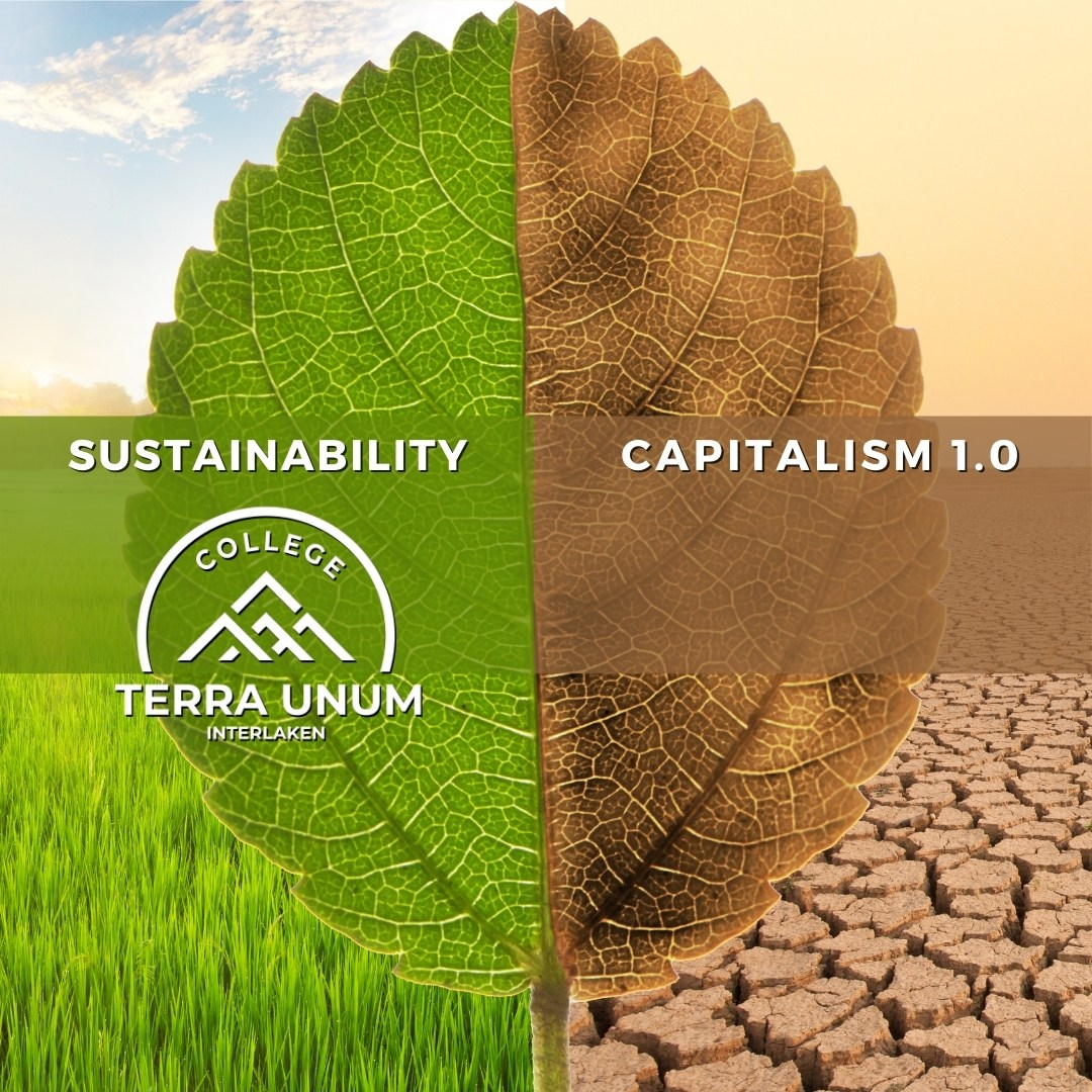 Terra Unum College responds to COVID and Capitalism 1.0 by launching Swiss Social Entrepreneurship Degree and funding programme