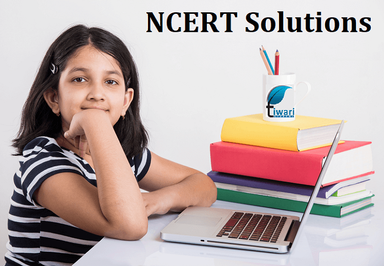 Details About How to Download NCERT Solution Books