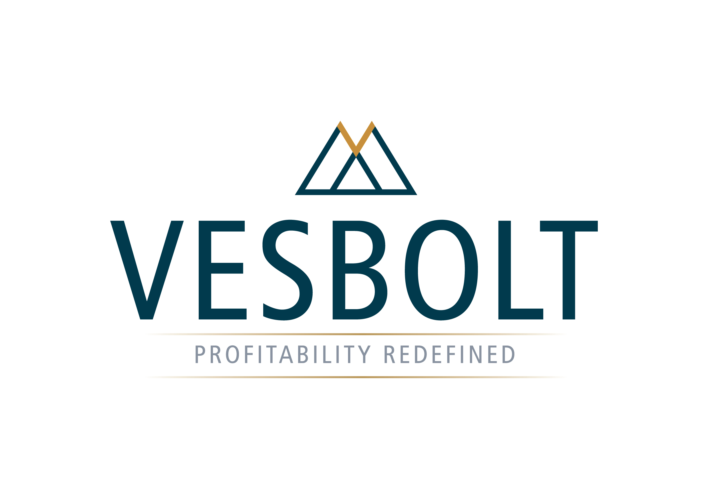 Asset and Portfolio Management Service VESBOLT Carves a Unique Identity with Focus on Profits and Growth